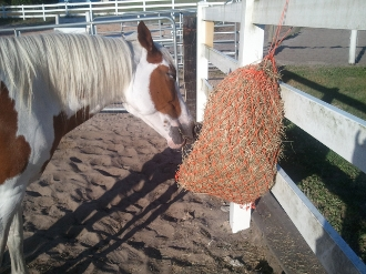 "Original Size Hay Net 35"" With Drawstring"